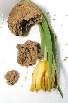 Tulip And Bread Stock Photos