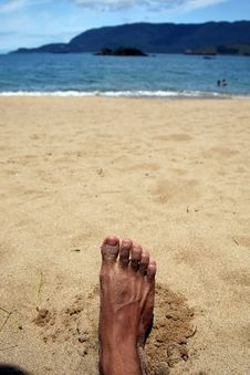 Relaxing On The Beach Royalty Free Stock Image