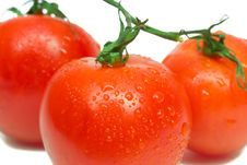 Free Three Red Tomatoes Royalty Free Stock Photo - 4652825