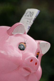 Free Pig Happy Royalty Free Stock Photos - 4653248