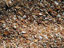 Free Broken Seashells Texture Stock Photos - 4653543