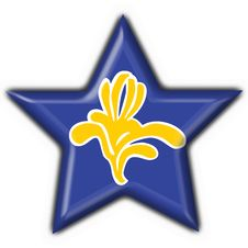 Free Flag Of Brussels (Belgium) Star Shape Stock Photo - 4654460