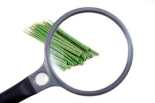 Free Incense Sticks Seen Through Magnifier Royalty Free Stock Photos - 4655928