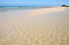 Free Beach On Socotra Island Royalty Free Stock Photos - 4656808