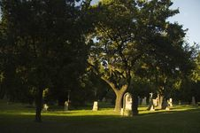 Free Cemetery With Fresh Green Trees Royalty Free Stock Image - 4657276