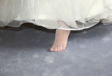 Free Leg Of The Bride Royalty Free Stock Photo - 4658085