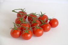 Free Vine Tomatoes Stock Photography - 4658252