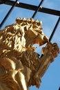 Free A Golden Lion On A Cast Iron Gate Stock Photos - 4663263