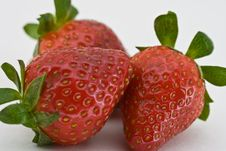 Free Trio Of Strawberries Royalty Free Stock Photography - 4660307