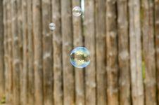 Free Soap Bubble Royalty Free Stock Photos - 4663478