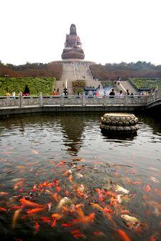 Free Arya Avalokiteshvaral Stock Photo - 4663570