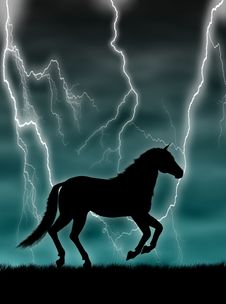 Horse In The Storm Stock Photos