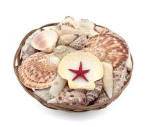 Seashells With Red Star In Basket Stock Image