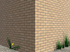 Free Brick Wall. Royalty Free Stock Photo - 4665585