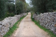Free A Pathway In Countryside Stock Photos - 4665883