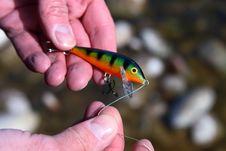 Free Fishing Lure Royalty Free Stock Photos - 4666098