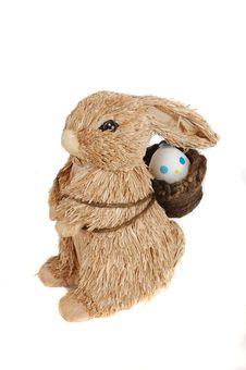 Free Bunny Royalty Free Stock Photo - 4666615