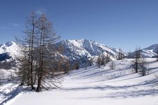 Free Snow Covered Meadow In The Alps With Ski Trail Royalty Free Stock Image - 4667596