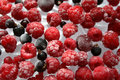 Free Frozen Berries Royalty Free Stock Images - 4672199