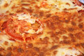 Free Close Up Of Cheese & TomatoPiz Royalty Free Stock Image - 4674406