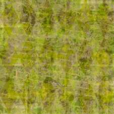 Free Rusty Grass Textured Background Royalty Free Stock Photo - 4670745