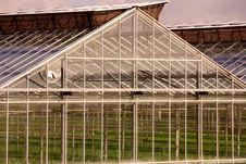 Free Greenhouse Stock Image - 4672311