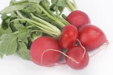 Free Fresh Radishes Stock Image - 4673791