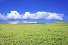 Free Field Stock Image - 4675181