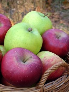 Free Red And Green Apples In Basket Stock Photo - 4675740