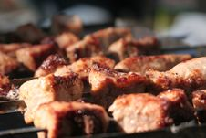 Free Barbecue In The Open Air Stock Photo - 4675850