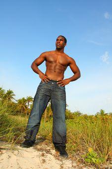 Free Bodybuilder Posing For The Camera Stock Photos - 4677583