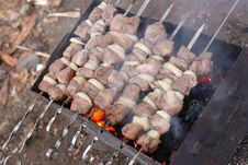 Free Shashlik Royalty Free Stock Photos - 4678528