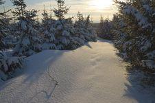 Free Winter Sunset Stock Image - 4683021