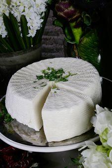 Free Cheese Royalty Free Stock Photos - 4684598