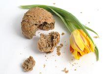Free Tulip And Bread Stock Photos - 4685113