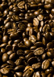 Free Coffee Beans Background Royalty Free Stock Image - 4685606