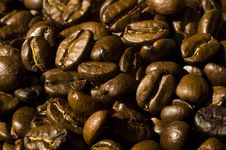 Free Coffee Beans Background Royalty Free Stock Photography - 4685607