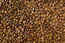 Free Coffee Beans Background Royalty Free Stock Photography - 4685617