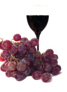 Grape And Vine Stock Image