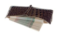 Free Purse With Money Royalty Free Stock Photo - 4689045