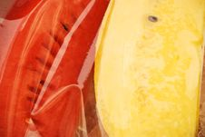 Free Fruit In Bags Royalty Free Stock Photos - 4689598