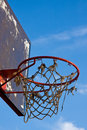 Free Basketball Royalty Free Stock Images - 4693279