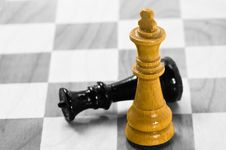 Free Chess Stock Photography - 4690212