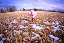 Free Girl In A Field5 Royalty Free Stock Photo - 4690925