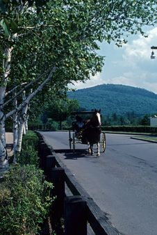 Free Carriage Ride Royalty Free Stock Images - 4691909
