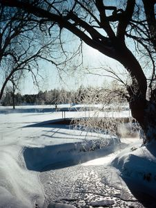 Free Frozen Stream Stock Photo - 4691940
