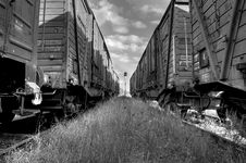 The Wagons Stock Image