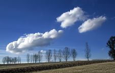 Free Clouds And Trees_rural Landscape Royalty Free Stock Photos - 4692198