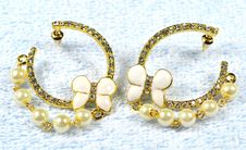 Free Jewelry Earring Royalty Free Stock Photos - 4692698