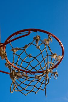 Free Basketball Royalty Free Stock Photos - 4693298